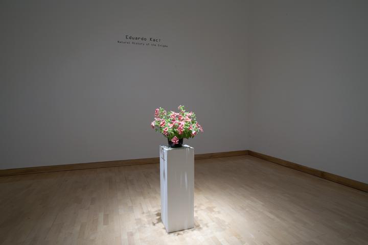 NHE.exhibition.1.jpg