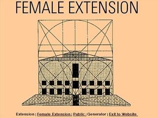 Cornelia Sollfrank «Female Extension»