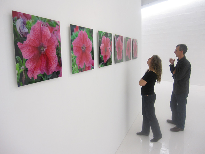 plantimal.photo.show.jpg